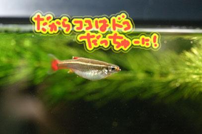 60627akahire
