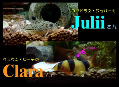 JuliiClara01.jpg