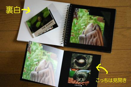 Book31302