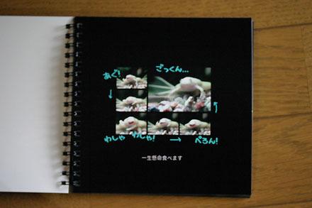 Book31303