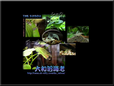 yamato-sample.jpg