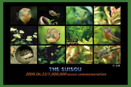 2008100acc01