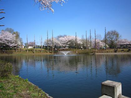 2010040807