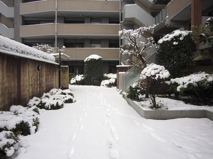 20120229yuki01
